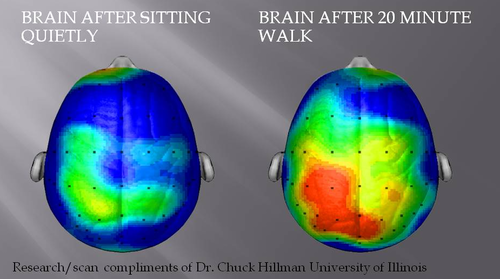 brain on exercise